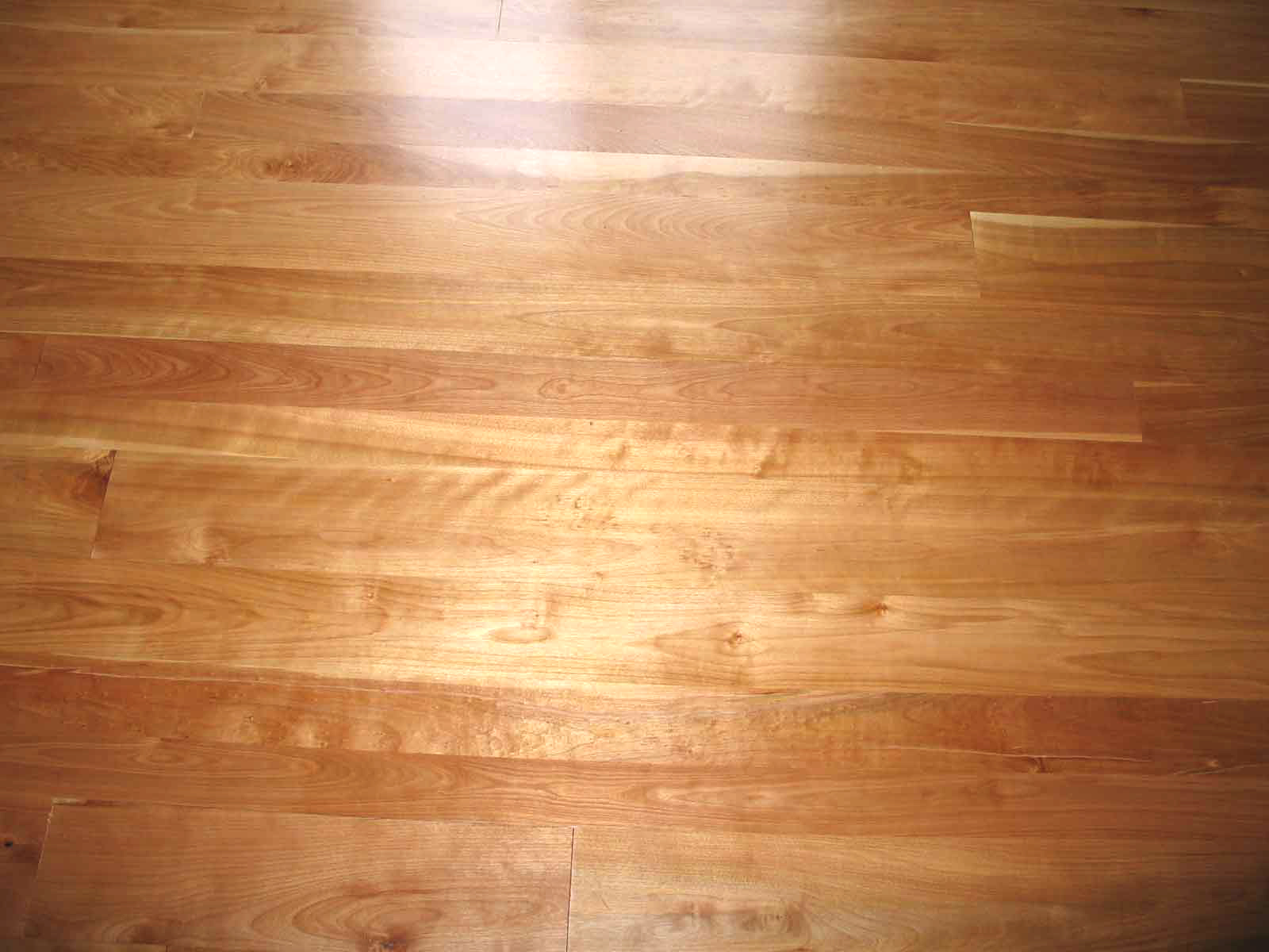 Yellow birch floors for Birch hardwood flooring